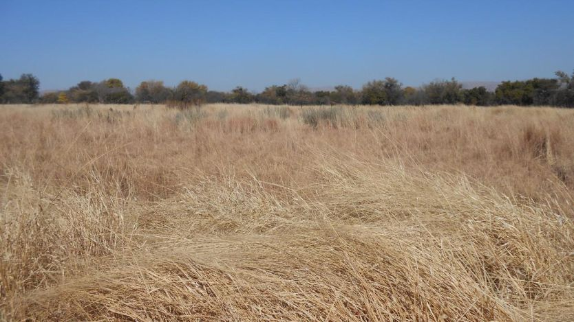 Vacant Land for sale in Kroondal, Rustenburg